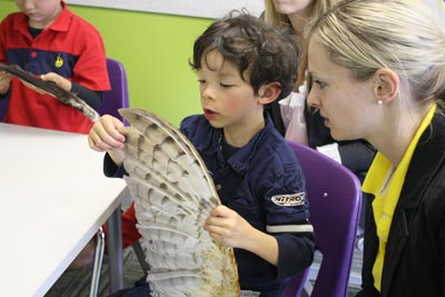 Students meet owls at Pear Tree Education 10