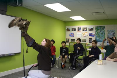 Students meet owls at Pear Tree Education 17