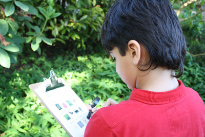 English in Context: At Pear Tree, students learn by doing and by using pictures with words.