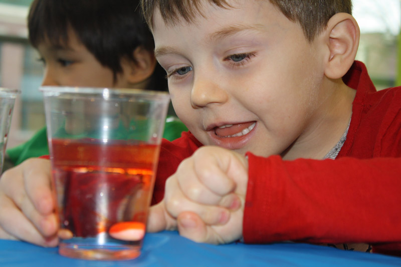Science Fun on Family Day 4