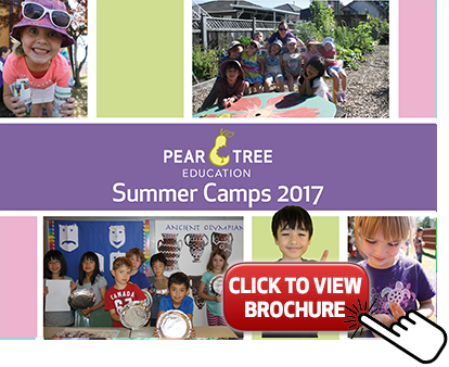 Pear Tree Summer Brochure EV 2016