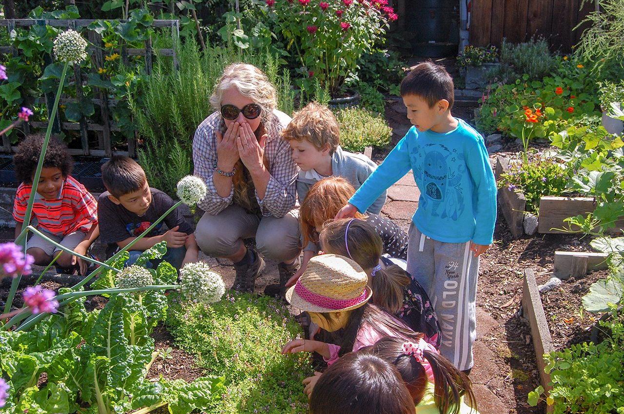 Summer Camps Vancouver 2019 - Pear Tree Education
